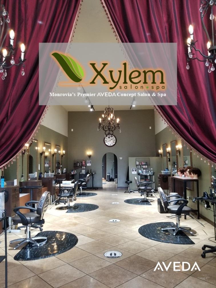 Xylem Salon Interior With Glow Logo